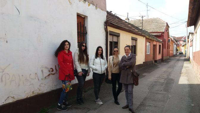Almaški kraj – novosadski lavirint